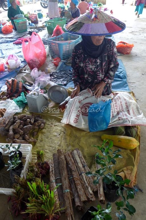 Bu Kardiyem penjual Bawang Bromot atau Bawang Dayak (Copy)