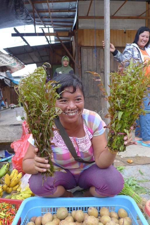 Foto Pasar Tradisional Olah bebaya Melak, Penjual Pakis Merah (Copy)