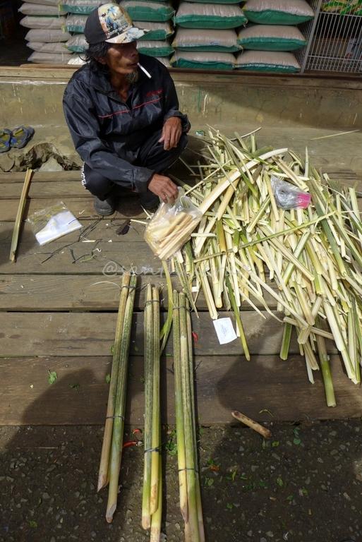 Penjual Umbut Rotan, pasar nala (Copy)