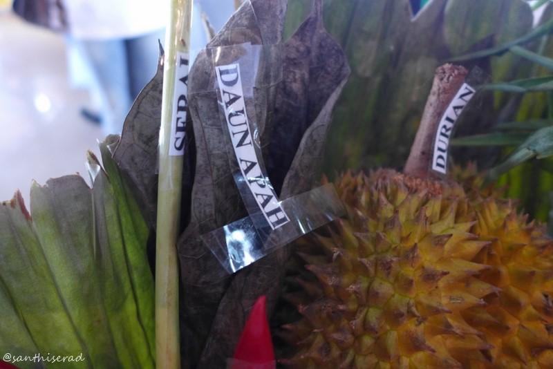 Daun Apah khas Kalimantan Utara (Copy)