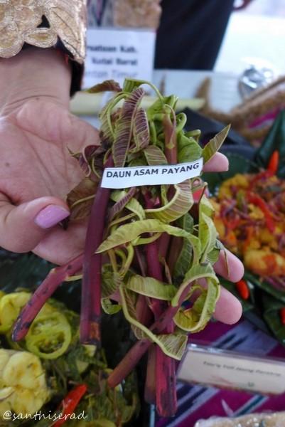 Daun Asam Payang, khas Kutai Barat (Copy)