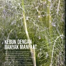 Artikel Saya dan BumiHerbal di Martha Stewart Living Indonesia Maret 2014