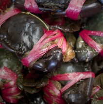 Pasar Modern BSD: Kepiting Papua